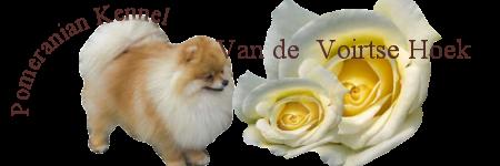 An den Beitrag angehängtes Bild: http://www.vandevoirtsehoek.nl/links/vdvhoek3.png